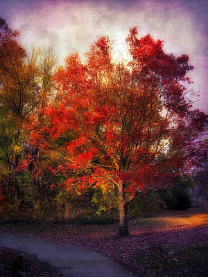 Red Leaf Digital Art - Autumn Maple 2 by Jessica Jenney