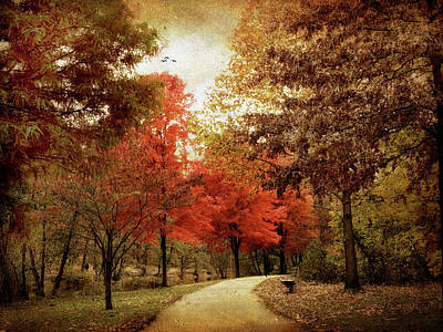 Autumn Landscape Digital Art - Autumn Maples by Jessica Jenney