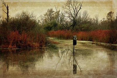 Photograph - Autumn Marsh by Scott Kingery