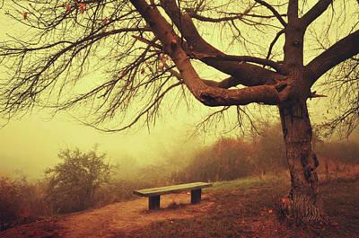 Photograph - Autumn Melancholy by Jenny Rainbow