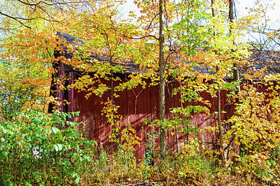 Photograph - Autumn Michigan Barn  by John McGraw