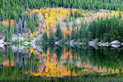 Photograph - Autumn Mirror At Bear Lake by David Chandler