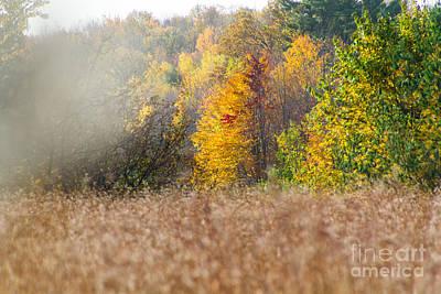 Photograph - Autumn Mist by CJ Benson
