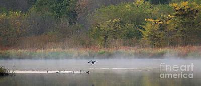 Photograph - Autumn Mist by Elizabeth Winter