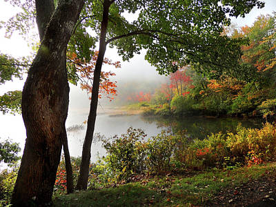 Photograph - Autumn Mist On Baker Pond by Nancy Griswold