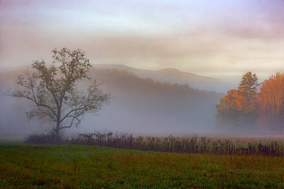 Autumn Mist Art Print by Rick Berk