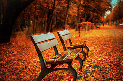 Fall Season Photograph - Autumn Moments by Happy Home Artistry