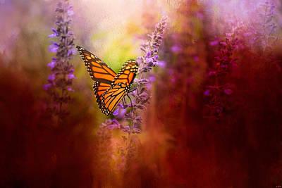 Photograph - Autumn Monarch by Jai Johnson