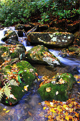 Williams River Scenic Backway Photograph - Autumn Monongahela National Forest by Thomas R Fletcher