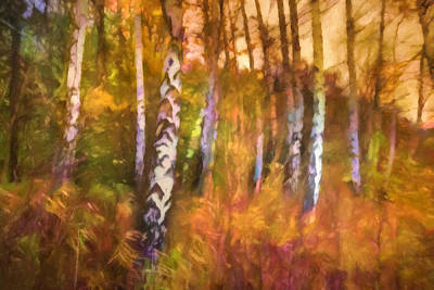 Lightscape Painting - Autumn Mood by Lutz Baar