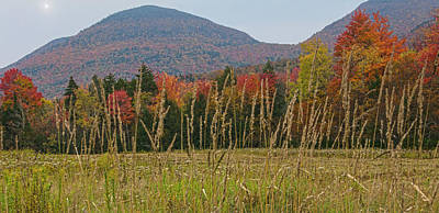 Photograph - Autumn Moods In The Catskills by Angelo Marcialis