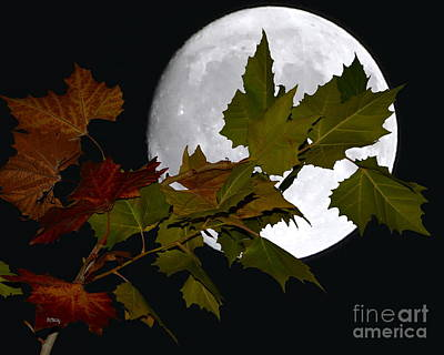 Photograph - Autumn Moon by Patrick Witz