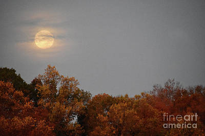 Photograph - Autumn Moon by Skip Willits