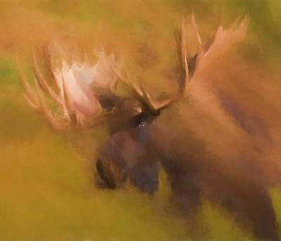 Rack Mixed Media - Autumn Moose by Dan Sproul