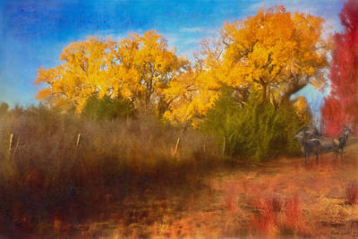 Photograph - Autumn Morning And Red Deer by Anna Louise