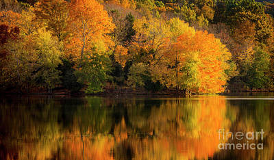 Photograph - Autumn Morning At The Lake by Brian Jannsen