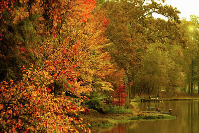 Photograph - Autumn Morning by Barry Jones