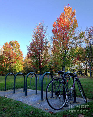 Photograph - Autumn Morning Bicycle by Felipe Adan Lerma