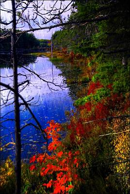 Photograph - Autumn Morning by Bill Howard