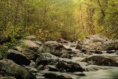 Photograph - Autumn Morning Creekside  by Saija Lehtonen