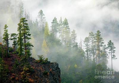 Photograph - Autumn Morning Fog by Mike Dawson