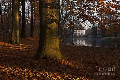 Buche Photograph - Autumn Morning In Park Branitz by Steffen Krahl