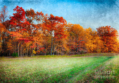 Photograph - Autumn Morning In The Blue Ridge Fx by Dan Carmichael