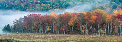 Autumn Morning Mist Art Print