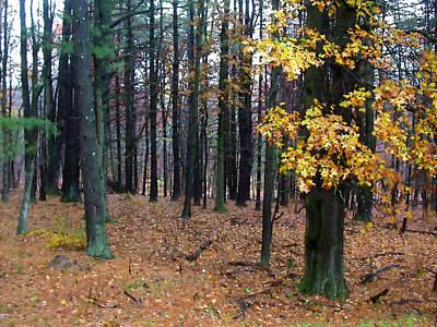 Painting - Autumn Morning by Paul Sachtleben