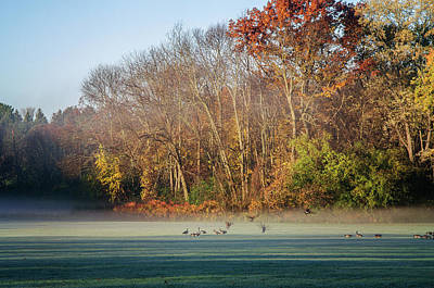 Photograph - Autumn Morning by Susan McMenamin