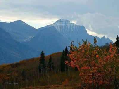Photograph - Autumn Mountains In Montana by Tracey Vivar