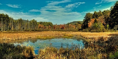Photograph - Autumn Near Lake George by David Patterson