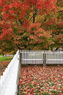 Autumn New England Art Print by John Greim