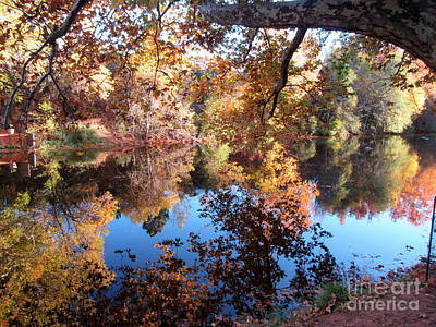 Photograph - Autumn Oak Creek Reflections by Marlene Rose Besso