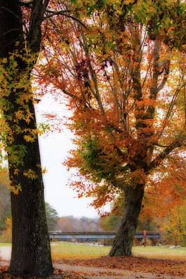 Photograph - Autumn Oaks - Fall Landscape by Barry Jones