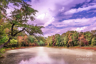 Photograph - Autumn On A Chesapeake Bay Pond by Patrick Wolf