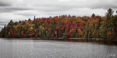 Autumn On Canoe Lake Original