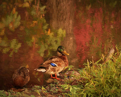 Photograph - Autumn On Drakes Pond by Susan Rissi Tregoning