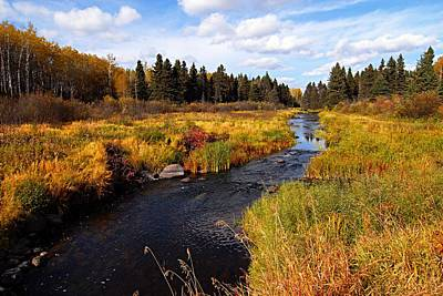 Autumn On Jackfish Creek Art Print