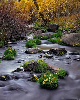 Photograph - Autumn On Mill Creek by Paul Breitkreuz