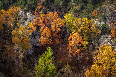 Photograph - Autumn On Mount Magazine by James Barber