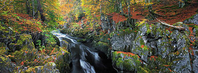 Photograph - Autumn On River Esk by Dave Bowman