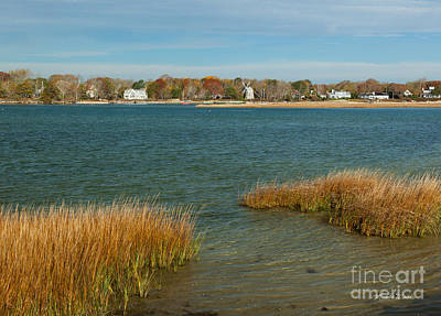Trees Photograph - Autumn On The Bass River I by Michelle Wiarda