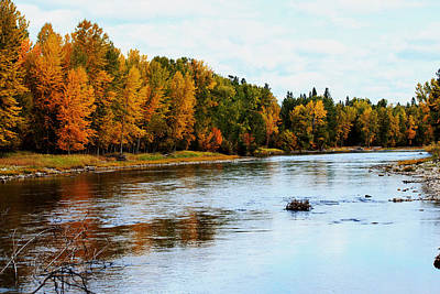 Photograph - Autumn on the Bitterroot River by Laurie Pelham