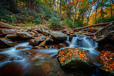 Autumn On The Chimney Tops Trail Art Print by Rick Berk