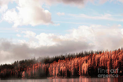 Photograph - Autumn On The Lake by Janie Johnson