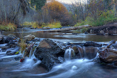 Photograph - Autumn On The Little Colorado by Sue Cullumber