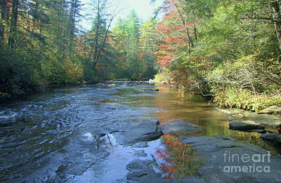 Photograph - Autumn On The Little River by Kevin McCarthy