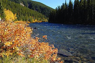 Photograph - Autumn On The Maligne River by Larry Ricker