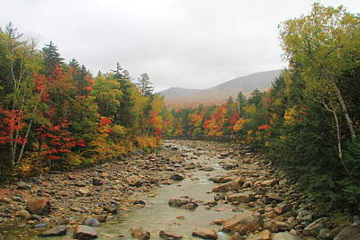 Photograph - Autumn On The Pemigewasset River by Dan Sproul